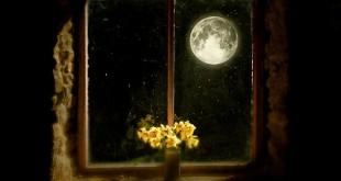 cam nhan ve kho tho cuoi bai tho anh trang lop 9 2 310x165 - Top 6 bài văn mẫu Cảm nhận về khổ thơ cuối bài thơ Ánh trăng lớp 9 chọn lọc