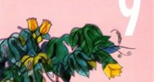 thuyet minh ve sach giao khoa ngu van lop 9 2 310x165 - Top 10 những bài văn mẫu Thuyết minh về sách giáo khoa Ngữ Văn lớp 9 chọn lọc