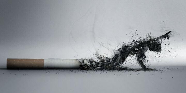 nghi luan xa hoi ve hut thuoc la co hai cho suc khoe 1 - Top 10 bài văn mẫu Nghị luận xã hội về hút thuốc lá có hại cho sức khỏe lớp 9 chọn lọc
